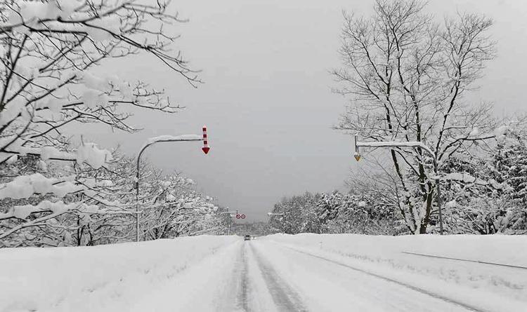 ព្រិលធ្លាក់នៅរដូវក្តៅគឺមានពិតបើមិនជឿអ្នកអាចទៅ Hokkaido